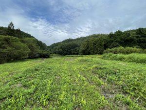 亀岡市農業